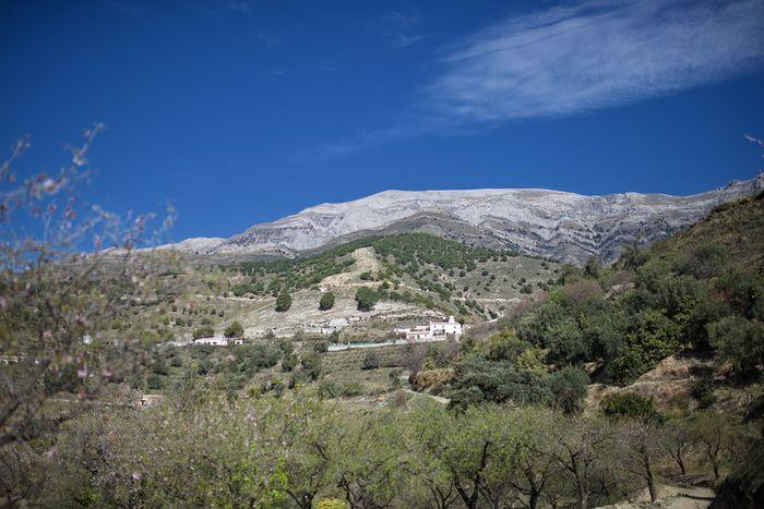 Casa Molino - La Maroma, Sedella, Andalusien