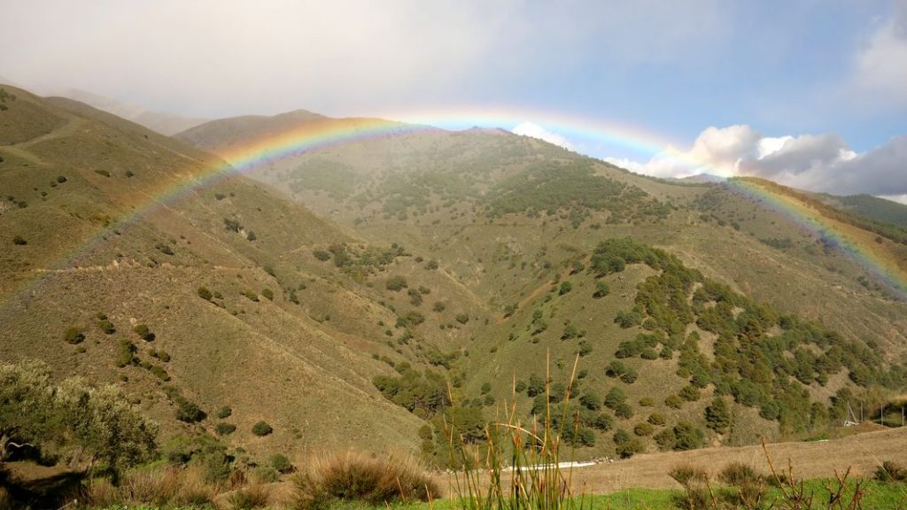 Umgebung - El Molino del Maroma in Sedella, Andalusien - 01