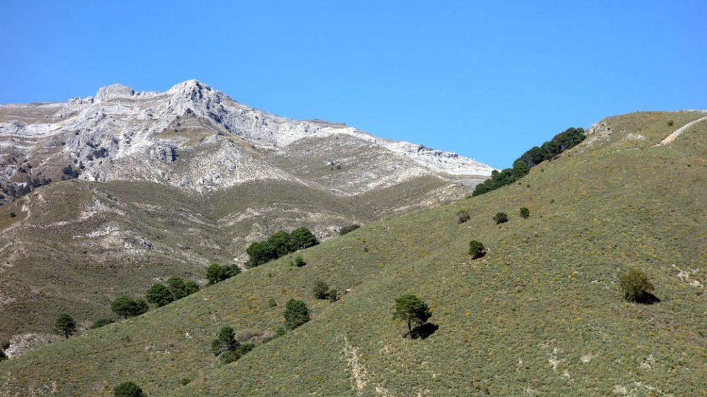 Umgebung - El Molino del Maroma in Sedella, Andalusien - 02